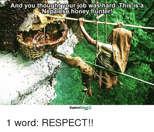 Memes, Respect, and Word: And you thought your job was hard. This is a  Nepalese honey hunter!  Talent  Explore 1 word: RESPECT!!