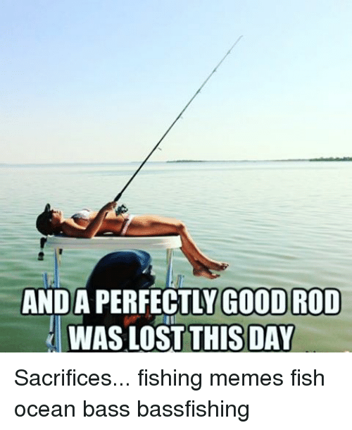 Fishing memes 28 images 25 best memes about gone for Good fishing days