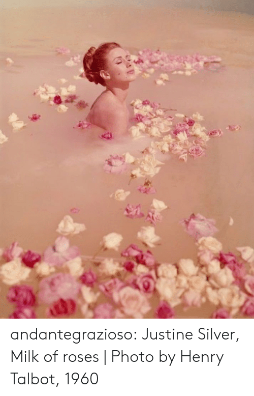 Tumblr, Blog, and Http: andantegrazioso:   Justine Silver, Milk of roses   Photo by Henry Talbot, 1960