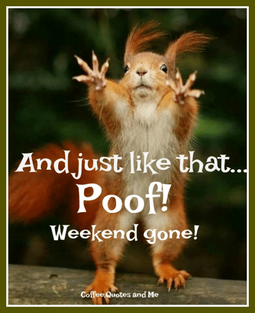 andjust like that poof weekend goner coffee quotes and me