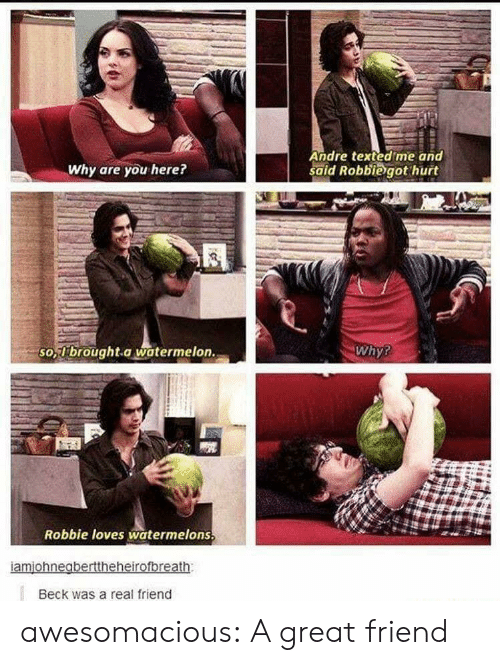 Tumblr, Beck, and Blog: Andre texted me and  said Robbiegot hurt  Why are you here?  so  -brought.a watermelon.  Why?  Robbie loves watermelons  Beck was a real friend awesomacious:  A great friend