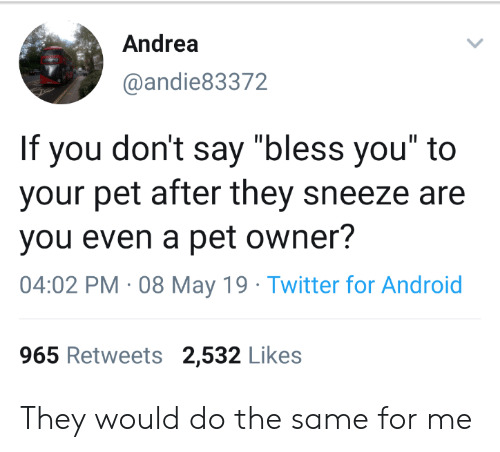 "Android, Twitter, and May 19: Andrea  @andie83372  If you don't say ""bless you"" to  your pet after they sneeze are  you even a pet owner?  04:02 PM 08 May 19 Twitter for Android  965 Retweets 2,532 Likes They would do the same for me"