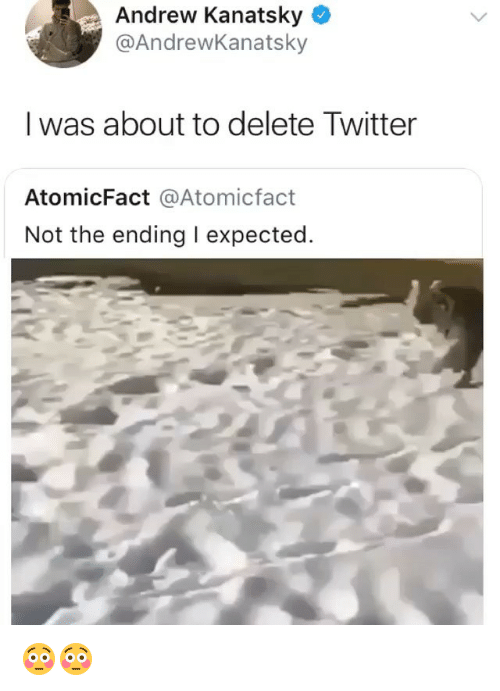Twitter, Girl Memes, and Delete: Andrew Kanatsky *  @AndrewKanatsky  I was about to delete Twitter  AtomicFact @Atomicfact  Not the ending I expected 😳😳