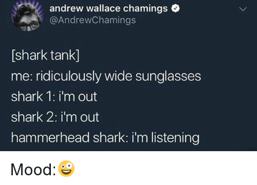 Mood, Shark, and Sunglasses: andrew wallace cham ings  @AndrewChamings  [shark tank]  me: ridiculously wide sunglasses  shark 1:i'm out  shark 2: i'm out  hammerhead shark: i'm listening Mood:🤪