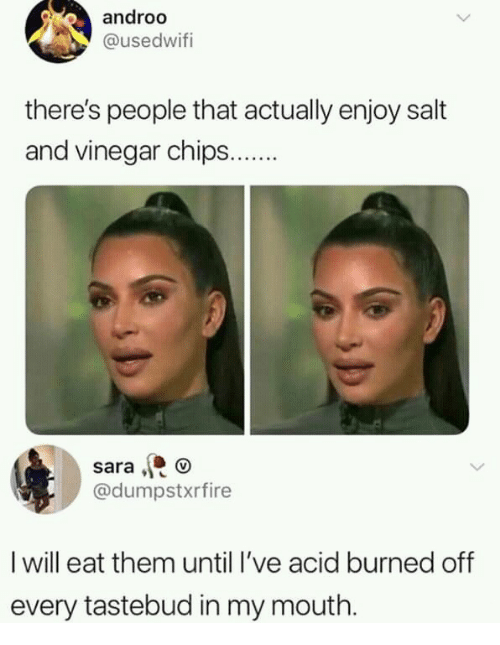 Salt, Chips, and Acid: androo  @usedwitfi  there's people that actually enjoy salt  and vinegar chips.  sara , o  @dumpstxrfire  I will eat them until I've acid burned off  every tastebud in my mouth.