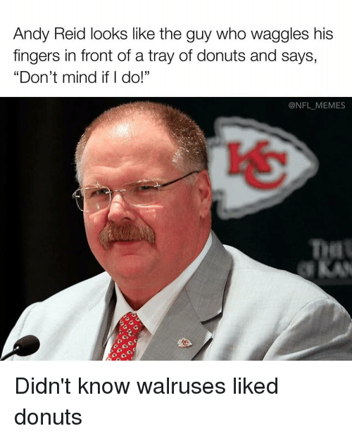 """Andy Reid, Memes, and Fingering: Andy Reid looks like the guy who waggles his  fingers in front of a tray of donuts and says,  """"Don't mind if I do!""""  @NFL MEMES Didn't know walruses liked donuts"""