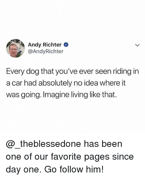 Memes, Living, and Andy Richter: Andy Richter  @AndyRichter  Every dog that you've ever seen riding in  a car had absolutely no idea where it  was going. Imagine living like that. @_theblessedone has been one of our favorite pages since day one. Go follow him!