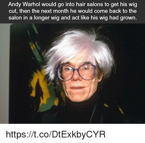 Memes Andy Warhol And Hair Would Go Into Salons To