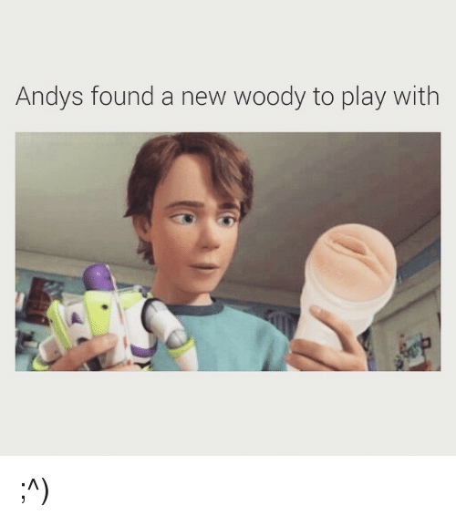 andys found a new woody to play with 875120 andys found a new woody to play with ^ dank meme on me me