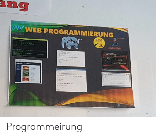 Engrish, Php, and Javascript: ang  WEB PROGRAMMIERUNG  ASPINET  93.6%  php)  JS  JavaScript  a  e  fame  ASP.NET 3.5 Demos  Ferm Subaited SercedaliyBete is the daia  PHP HTL Farm lapa Exmple Programmeirung