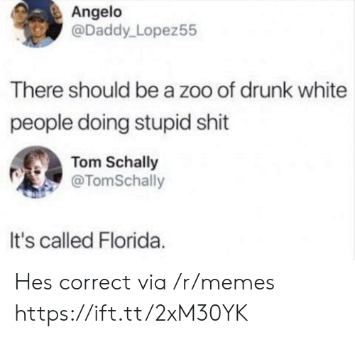 Drunk, Memes, and Shit: Angelo  @Daddy Lopez55  There should be a zoo of drunk white  people doing stupid shit  Tom Schally  @TomSchally  It's called Florida Hes correct via /r/memes https://ift.tt/2xM30YK
