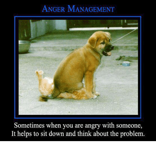 anger management sometimes when you are angry with someone it 4780417 anger management sometimes when you are angry with someone it