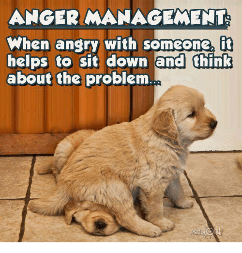 Memes, Anger Management, and Helps: ANGER MANAGEMENT  When anary with someone,  fit  helps to sit down and think  about the problem