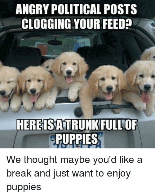 angry political posts clogging your feed l here isattrunkfullof puppies 7421125 ✅ 25 best memes about clogging clogging memes