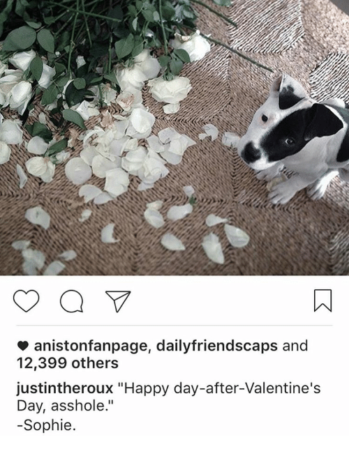 """Memes, Valentine's Day, and Happy: aniston fanpage, dailyfriendscaps and  12,399 others  justintheroux """"Happy day-after-Valentine's  Day, asshole.""""  Sophie"""