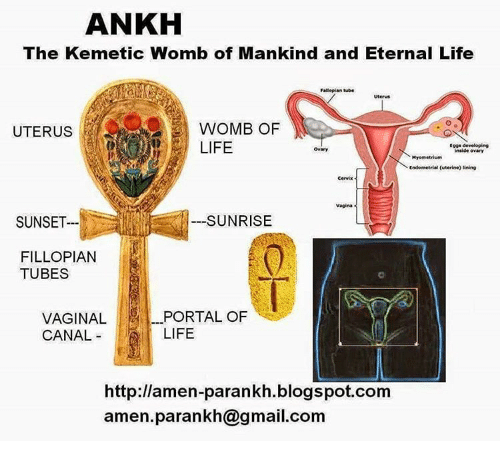 Ankh The Kemetic Womb Of Mankind And Eternal Life Fallopian Tube