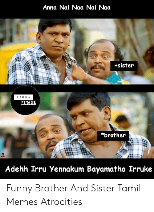 🔥 25+ Best Memes About Brother Sister Memes | Brother