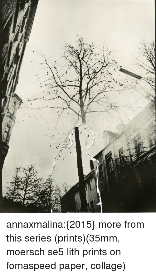 Anna, Tumblr, and Black: annaxmalina:{2015} more from this series (prints)(35mm, moersch se5 lith prints on fomaspeed paper, collage)