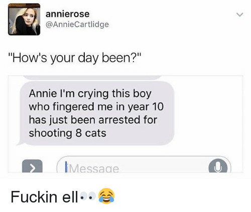 "Cats, Crying, and Annie: -) annierose  @AnnieCartlidge  ""How's your day been?""  Annie I'm crying this boy  who fingered me in year 10  has just been arrested for  shooting 8 cats  IMessaae Fuckin ell👀😂"