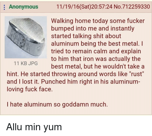 "Shit, Lost, and Anonymous: Anonymous  11/19/16(Sat)20:57:24 No.712259330  Walking home today some fucker  bumped into me and instantly  started talking shit about  aluminum being the best metal. I  tried to remain calm and explain  to him that iron was actually the  best metal, but he wouldn't take a  11 KB JPG  hint. He started throwing around words like ""rust""  and I lost it. Punched him right in his aluminum-  loving fuck face.  I hate aluminum so goddamn much."