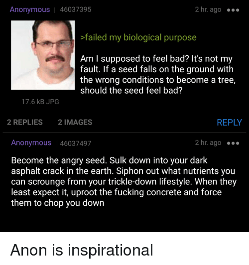 4chan, Bad, and Fucking: Anonymous | 46037395  2 hr. ago .  failed my biological purpose  Am I supposed to feel bad? It's not my  fault. If a seed falls on the ground with  the wrong conditions to become a tree,  should the seed feel bad?  17.6 kB JPG  2 REPLIES  2 IMAGES  REPLY  Anonymous | 46037497  2 hr. ago  Become the angry seed. Sulk down into your dark  asphalt crack in the earth. Siphon out what nutrients you  can scrounge from your trickle-down lifestyle. When they  least expect it, uproot the fucking concrete and force  them to chop you down