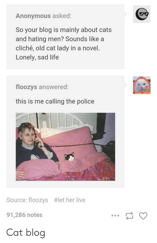Anonymous Asked So Your Blog Is Mainly About Cats and Hating