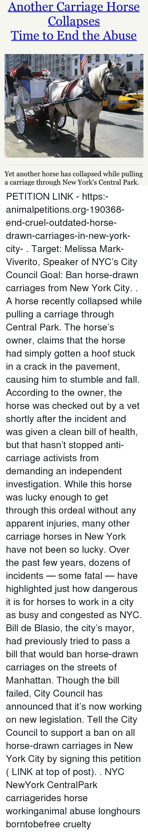 Another carriage horse collapses time to end the abuse yet 15636926 png
