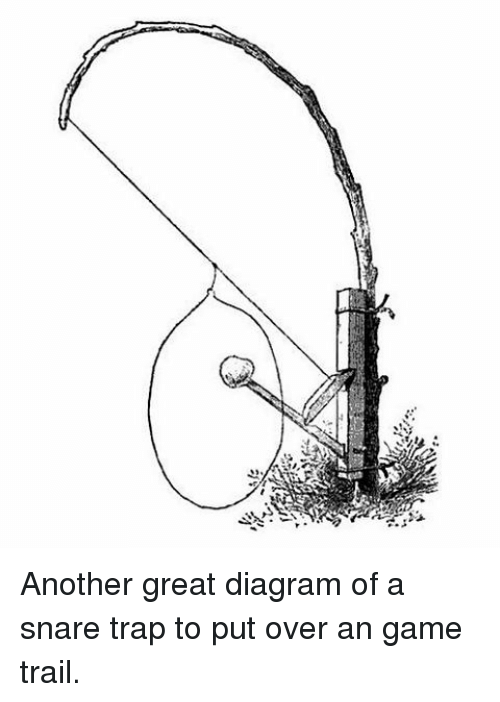 Another Great Diagram Of A Snare Trap To Put Over An Game Trail