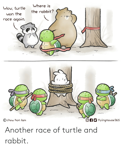 Rabbit, Turtle, and Race: Another race of turtle and rabbit.