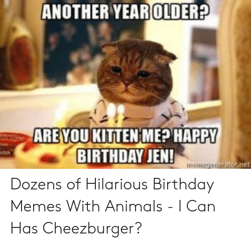 Animals, Birthday, and Memes: ANOTHER YEAROLDER?  ARE YOU KITTENIME? HAPPY  BIRTHDAY JEN!  net Dozens of Hilarious Birthday Memes With Animals - I Can Has Cheezburger?