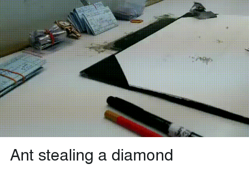 Diamond, Ant, and Stealing: Ant stealing a diamond