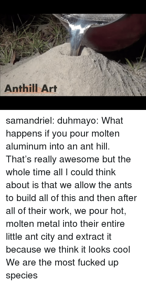 Anthill Art Samandriel Duhmayo What Happens if You Pour