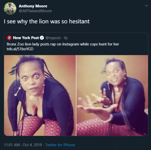 Instagram, Iphone, and New York: Anthony Moore  @AlThatandMoore  I see why  the lion was so hesitant  @nypost. 1h  New York Post  Bronx Zoo lion lady posts rap on Instagram while cops hunt for her  trib.al/S1boYGD  11:01 AM Oct 4, 2019 Twitter for iPhone