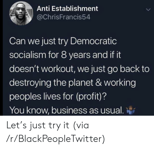 Blackpeopletwitter, Business, and Socialism: Anti Establishment  @ChrisFrancis54  Can we just try Democratic  socialism for 8 years and if it  doesn't workout, we just go back to  destroying the planet & working  peoples lives for (profit)?  You know, business as usual. Let's just try it (via /r/BlackPeopleTwitter)