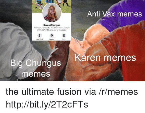 Beautiful, Children, and Memes: Anti Vax memes  Karen Chungus  Anti Vaxx, Mother of 2 beautiful children who are  UNVACCINATED, and new to Faccbook!  Add Friend  Karen memes  Big Chungus  emes the ultimate fusion via /r/memes http://bit.ly/2T2cFTs