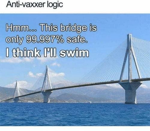 Logic, Anti, and Bridge: Anti-vaxxer logic  Hmmacon This bridge is  only 99.997% safe.  Ithink Il swim