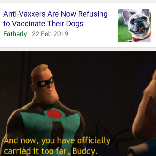 Dogs, Anti, and You: Anti-Vaxxers Are Now Refusing  to Vaccinate Their Dogs  Fatherly - 22 Feb 2019  And now, you have officially  carrièd it too far, Buddy.