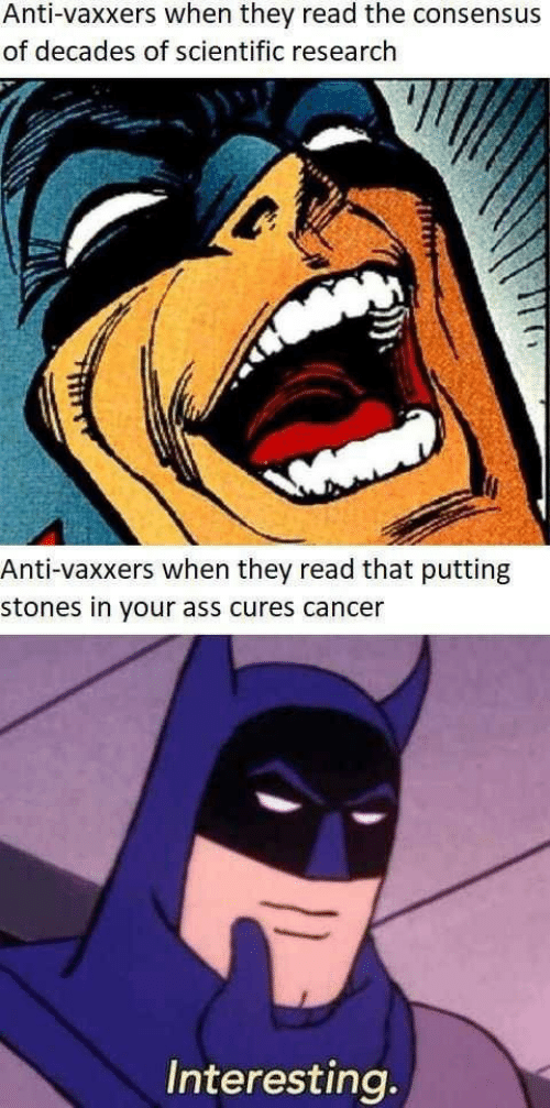 Ass, Cancer, and Anti: Anti-vaxxers when they read the consensus  of decades of scientific research  Anti-vaxxers when they read that putting  stones in your ass cures cancer  Interesting