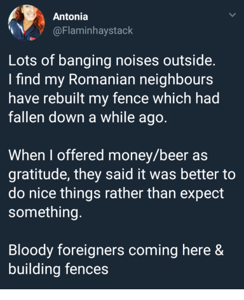 Beer, Money, and Banging: Antonia  @Flaminhaystack  Lots of banging noises outside.  I find my Romanian neighbours  have rebuilt my fence which had  fallen down a while ago  When I offered money/beer as  gratitude, they said it was better to  do nice things rather than expect  something.  Bloody foreigners coming here &  building fences