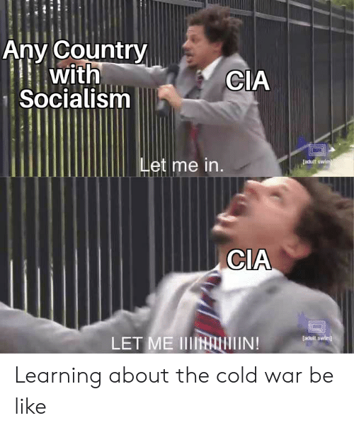 Be Like, Adult Swim, and Socialism: Anv Country  with  Socialism  CIA  et me in  adult swim  CIA  [aduit swim  LET ME IIIN Learning about the cold war be like