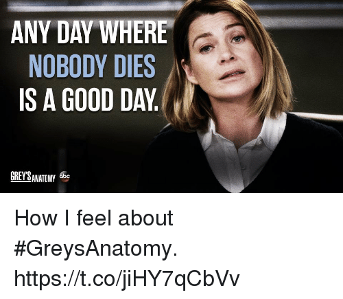 "Memes, Good, and Grey: ANY DAY WHERE  NOBODY DIES  IS A GOOD DAY  GREY SANATOMY ""。 How I feel about #GreysAnatomy. https://t.co/jiHY7qCbVv"