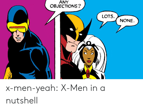 Tumblr, X-Men, and Yeah: ANY  OBJECTIONS?  LOTS  NONE x-men-yeah: X-Men in a nutshell