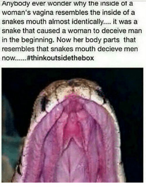 Think, Real snake up vagina thanks for