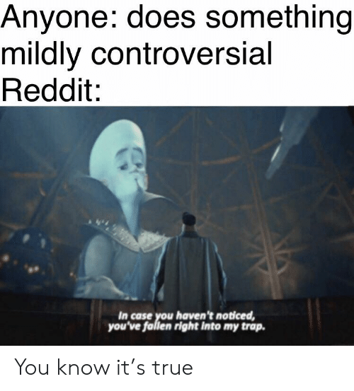Anyone Does Something Mildly Controversial Reddit in Case You Haven