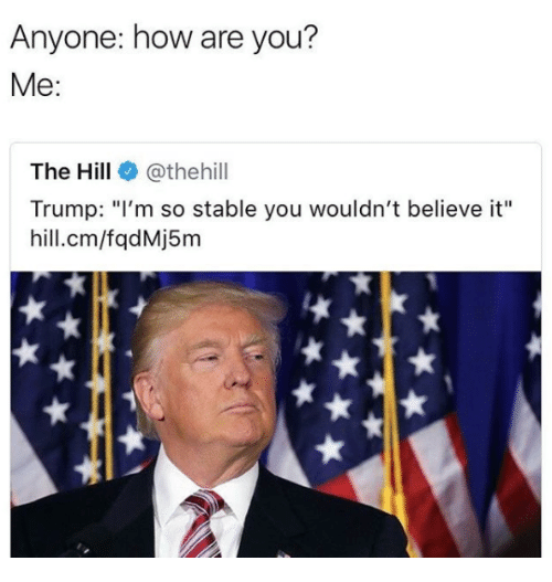 "Trump, How, and The Hill: Anyone: how are you?  Me:  The Hill@thehill  Trump: ""l'm so stable you wouldn't believe it""  hill.cm/fqdMj5m"