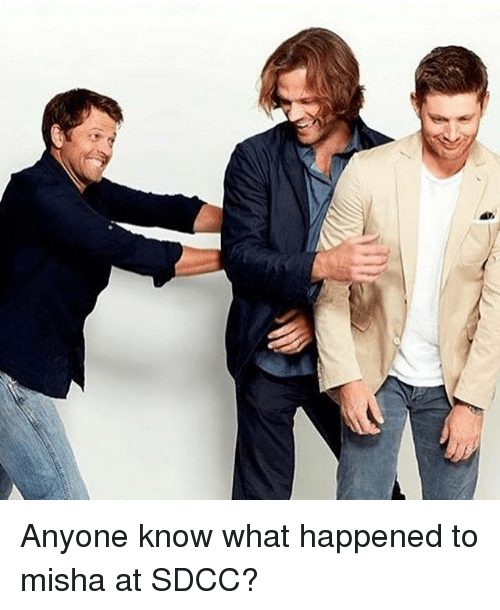 Memes, Anyone Know, and 🤖: Anyone know what happened to misha at SDCC?