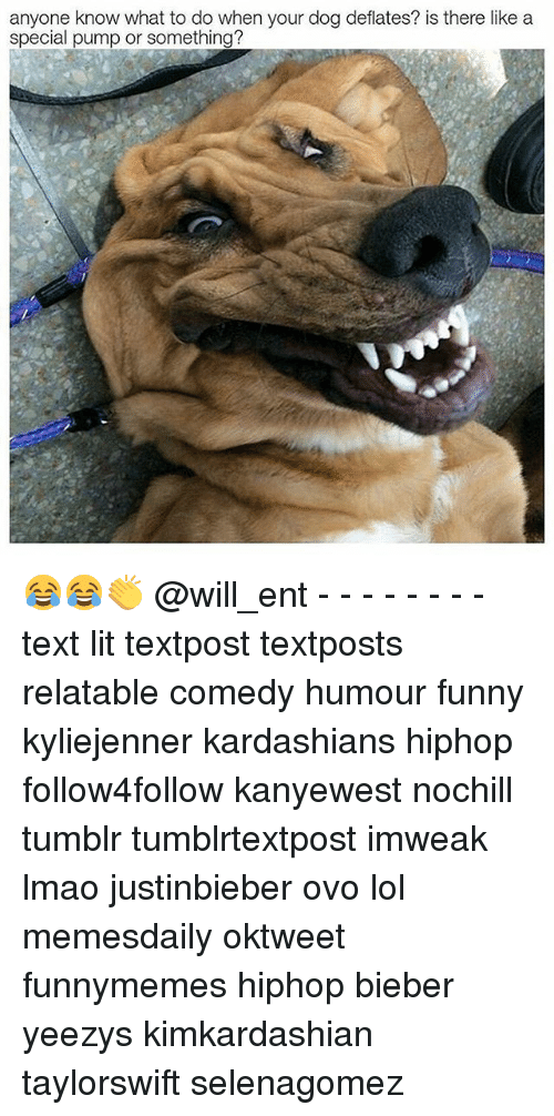 Funny, Kardashians, and Lit: anyone know what to do when your dog deflates? is there like a  special pump or something? 😂😂👏 @will_ent - - - - - - - - text lit textpost textposts relatable comedy humour funny kyliejenner kardashians hiphop follow4follow kanyewest nochill tumblr tumblrtextpost imweak lmao justinbieber ovo lol memesdaily oktweet funnymemes hiphop bieber yeezys kimkardashian taylorswift selenagomez