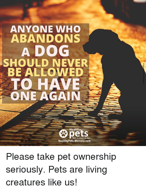 Dogs, Memes, and 🤖: ANYONE WHO  ABANDON  A DOG  SHOULD NEVER  BE ALLOWED  TO HAVE  ONE AGAIN  Healthy  With Dr. Karen Becker  Healthy Pets Mercola.com Please take pet ownership seriously. Pets are living creatures like us!