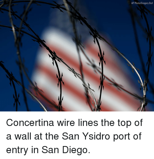 Memes, San Diego, and 🤖: AP Photo/Gregory Bull Concertina wire lines the top of a wall at the San Ysidro port of entry in San Diego.
