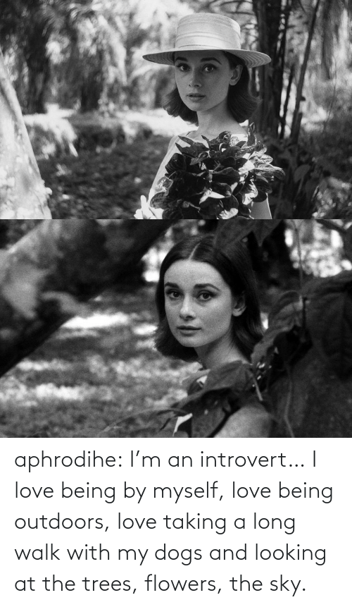 Dogs, Introvert, and Love: aphrodihe: I'm an introvert… I love being by myself, love being outdoors, love taking a long walk with my dogs and looking at the trees, flowers, the sky.
